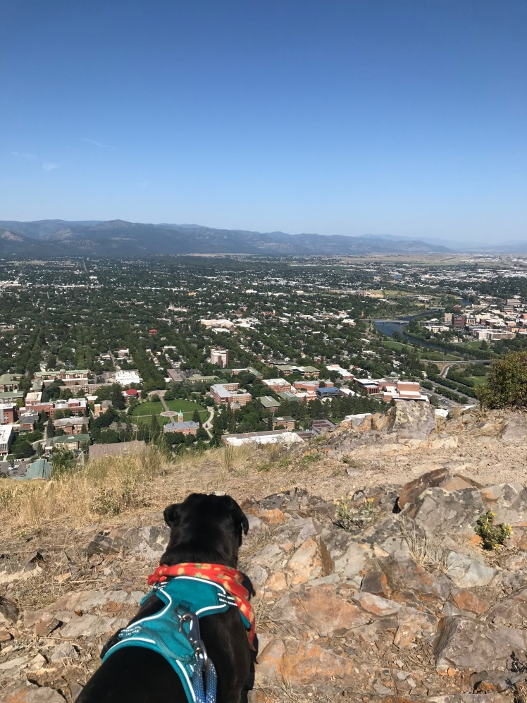 Looking down on Missoula