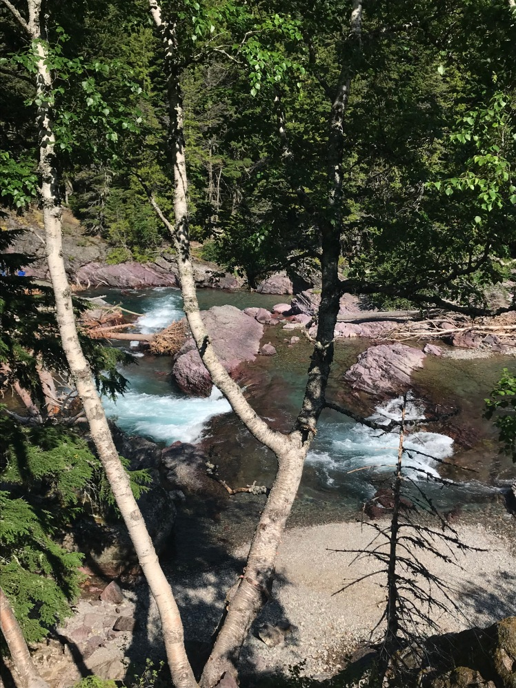 Rapids are Blue