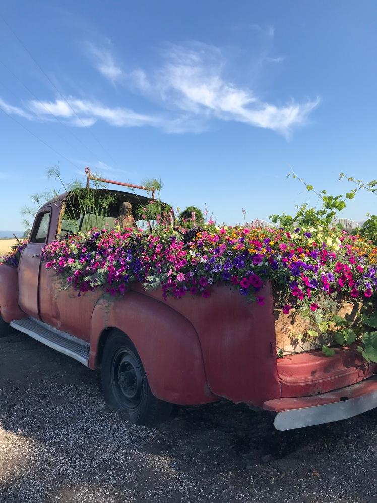 Truck Flowers Sauvie